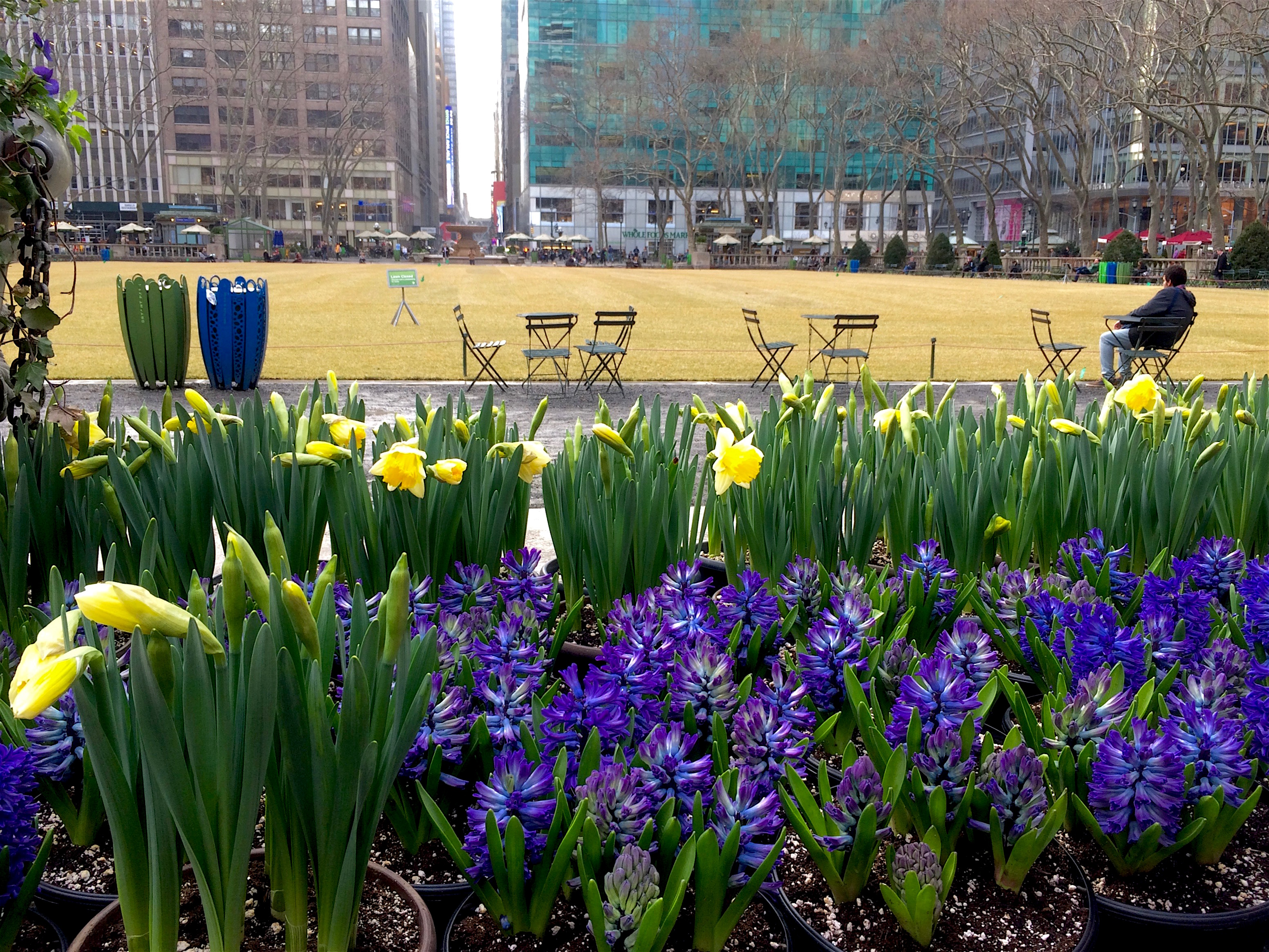 Spring Nyc Flowers Bryant Park New York Clich