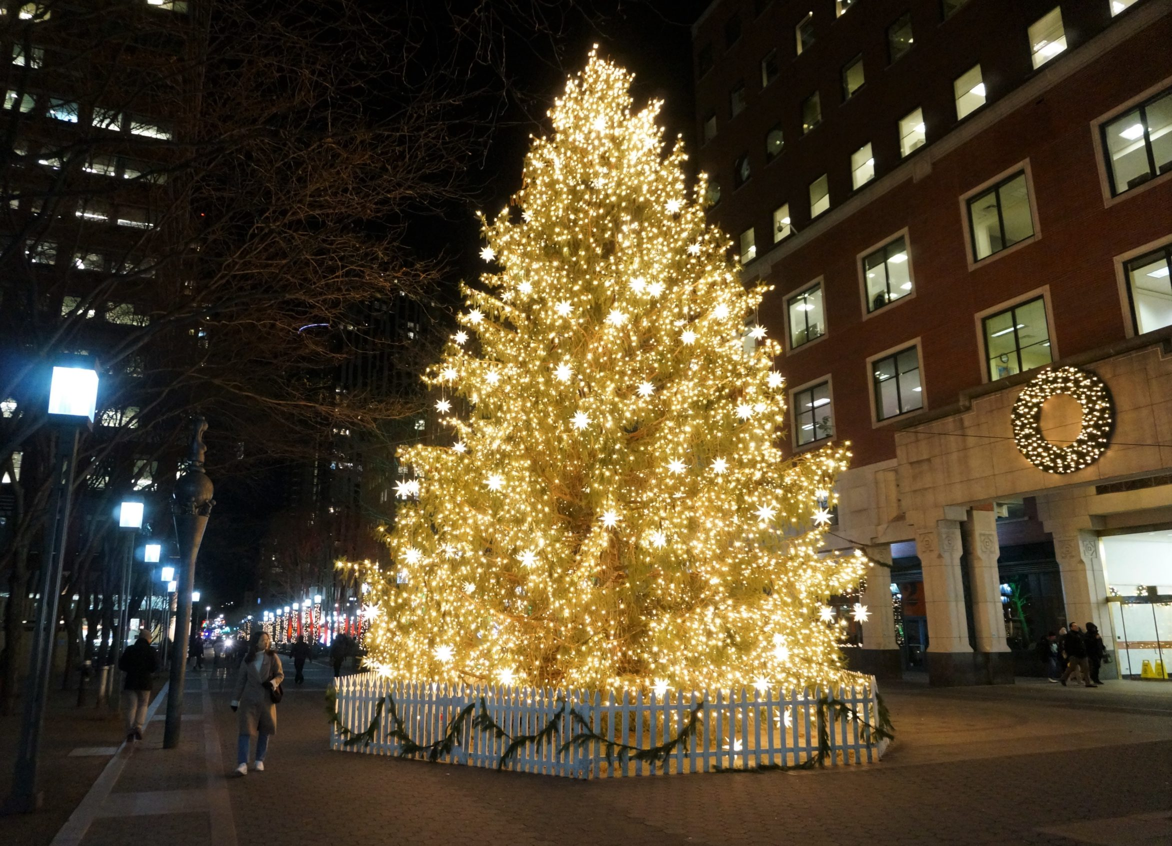i stumbled across this tree last night in downtown brooklyn and was dazzled it rivals rockefeller center i thought to myself - Largest Christmas Tree