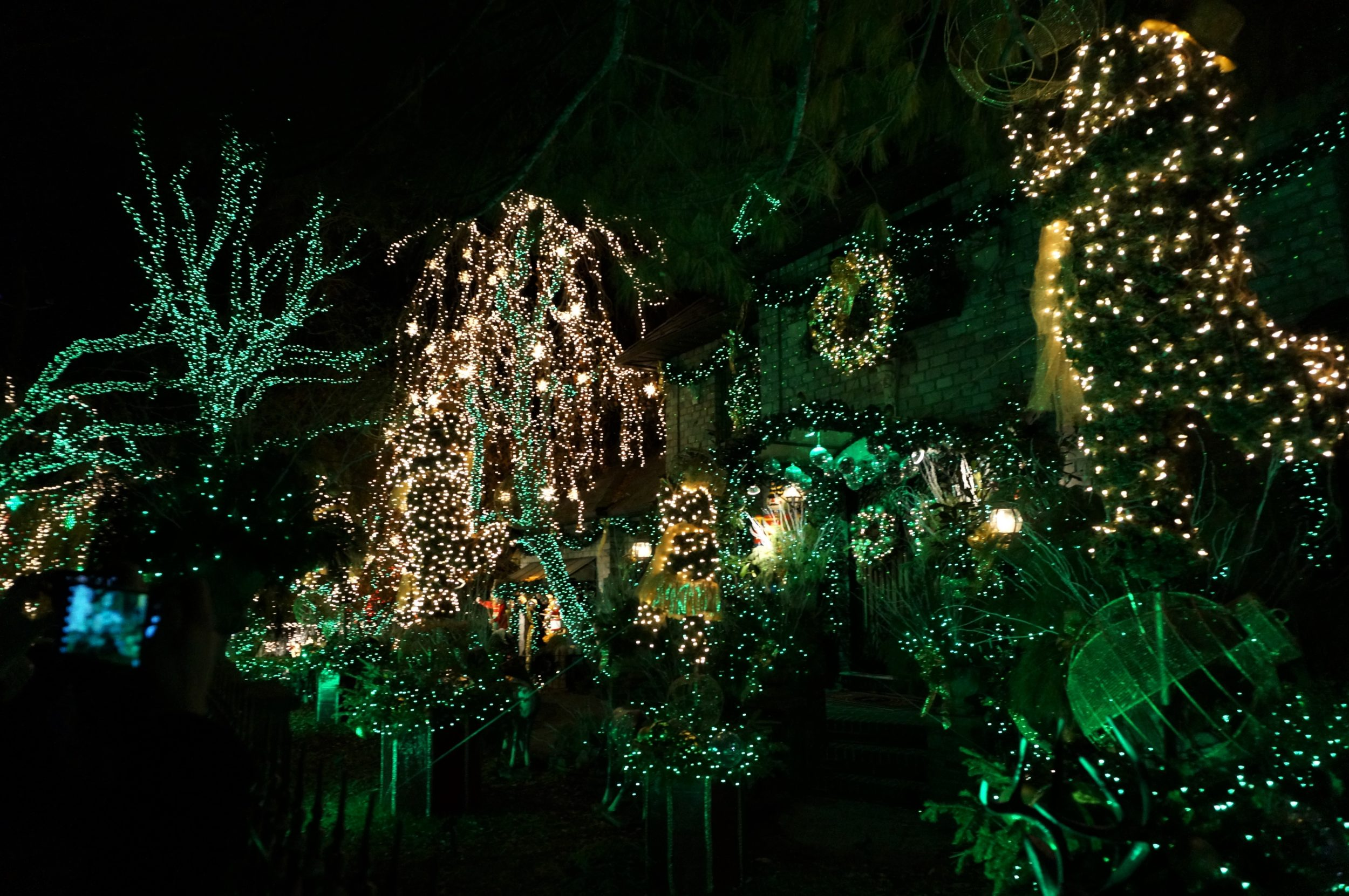 dyker lights professional christmas decorators