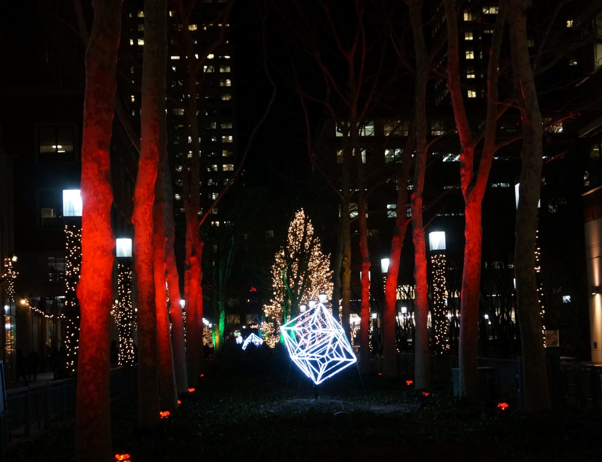 New York Cliché of the Day: The Largest Christmas Tree In ...